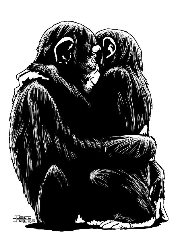 hug-cimps.jpg