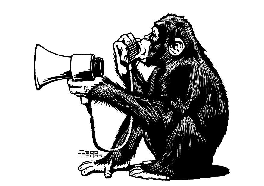 megaphone-chimp.jpg