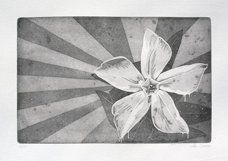 001-flower-print.jpg